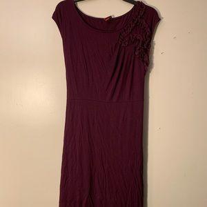 Merona Women's Purple Stretch Dress XL